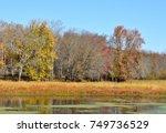 Autumn On The Ossekeag Hampton...