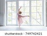 young ballet dancer in dance...   Shutterstock . vector #749742421