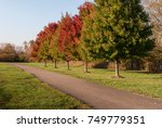 daytime running path with... | Shutterstock . vector #749779351