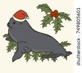 animal vector image  seal and... | Shutterstock .eps vector #749805601