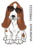 basset hound in black...   Shutterstock . vector #749822221