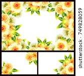 vintage delicate invitation... | Shutterstock .eps vector #749828059