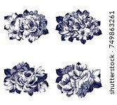 flower set | Shutterstock . vector #749863261