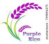 rice berry design on white...   Shutterstock .eps vector #749896375