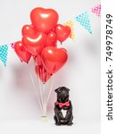 black pug dog in a red bowtie... | Shutterstock . vector #749978749