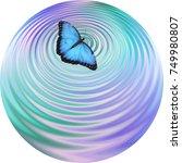 blue butterfly making ripples...   Shutterstock . vector #749980807