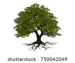oak tree | Shutterstock .eps vector #750042049