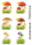 Set Of Mushrooms Vector...