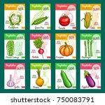 vegetables farm market or... | Shutterstock .eps vector #750083791