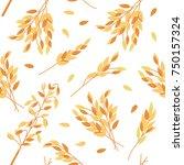 oat branches seamless pattern   ... | Shutterstock .eps vector #750157324