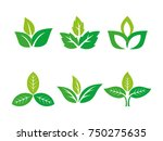 three leafs  plant  tree nature ... | Shutterstock .eps vector #750275635