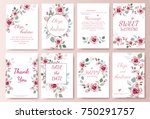 set of card with flower rose ... | Shutterstock .eps vector #750291757