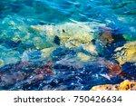 water background | Shutterstock . vector #750426634