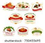 christmas cuisine festive... | Shutterstock .eps vector #750455695