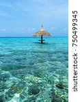single thatched sunshade... | Shutterstock . vector #750499345