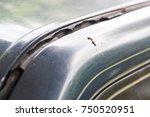 rubber door car is expired. | Shutterstock . vector #750520951