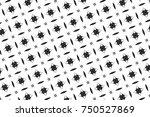 ornament with elements of black ... | Shutterstock . vector #750527869