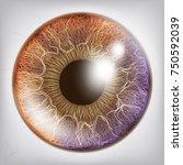 human eye iris vector. 3d...   Shutterstock .eps vector #750592039