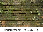 moss on old brick wall... | Shutterstock . vector #750637615