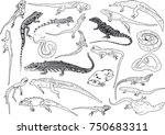 illustration with set of... | Shutterstock .eps vector #750683311