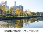 tokyo central city in autumn  ... | Shutterstock . vector #750741019