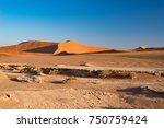 sossusvlei namibia  travel... | Shutterstock . vector #750759424