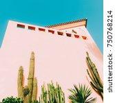minimal art. tropical mood.... | Shutterstock . vector #750768214