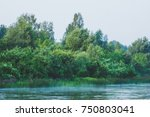 calm river with forest on the... | Shutterstock . vector #750803041