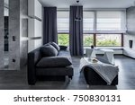 gray living room with sofa ... | Shutterstock . vector #750830131