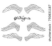angel wings  lettering  drawing ... | Shutterstock .eps vector #750831187