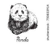 giant panda cube sitting  hand... | Shutterstock .eps vector #750833914