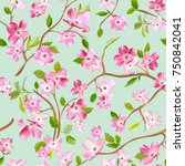 blooming spring flowers pattern ... | Shutterstock .eps vector #750842041
