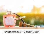 Sick Piggy Bank Use Thermomete...