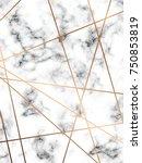 vector marble texture design... | Shutterstock .eps vector #750853819