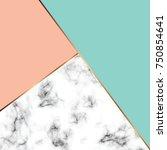 vector marble texture design... | Shutterstock .eps vector #750854641
