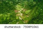 Aerial View Of Hazelnut Garden...