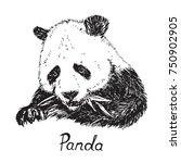 giant panda eating bamboo... | Shutterstock .eps vector #750902905