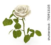 Stock photo white rose isolated on bright d illustration 750913105