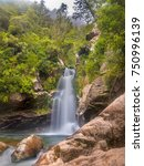 Small photo of Native forest with waterfall in the Mountains of Abel Tasman National Park, South Island, New Zealand