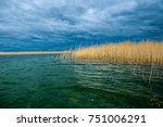 River With Reeds As A Blue...