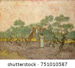 women picking olives  by... | Shutterstock . vector #751010587