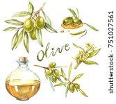 set a branch of ripe green... | Shutterstock . vector #751027561