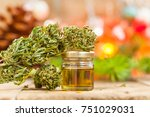 green leaves of medicinal... | Shutterstock . vector #751029031