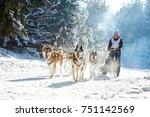 Husky Sled Dog Racing