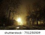 foggy street  dark trees ... | Shutterstock . vector #751250509