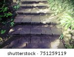 stairway to the natural forest... | Shutterstock . vector #751259119