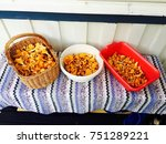 chanterelle mushrooms in... | Shutterstock . vector #751289221