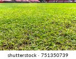 green grass in soccer stadium.... | Shutterstock . vector #751350739