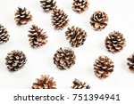 fir tree cone on a white... | Shutterstock . vector #751394941
