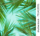 natural tropical plant leaves... | Shutterstock . vector #751415551